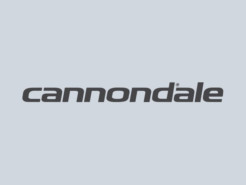 cannondale car graphics