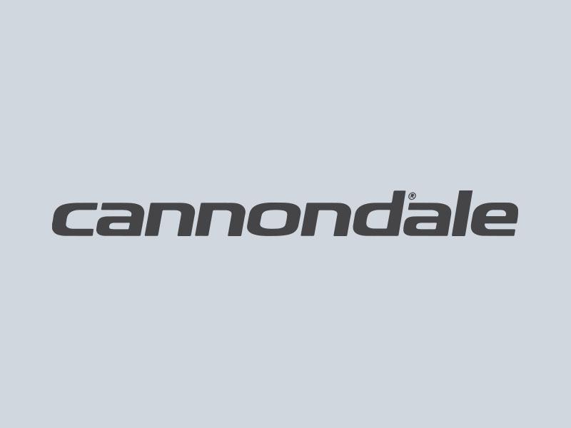cannondale car graphics