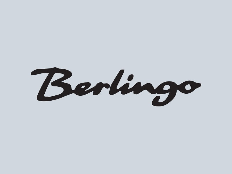 citroen berlingo car stickers